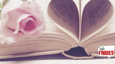 Frases sobre Libros amor a la lectura